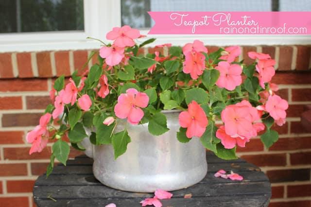 teapot planter 2