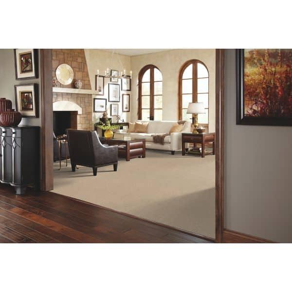 Carpet-Wood_Livingroom