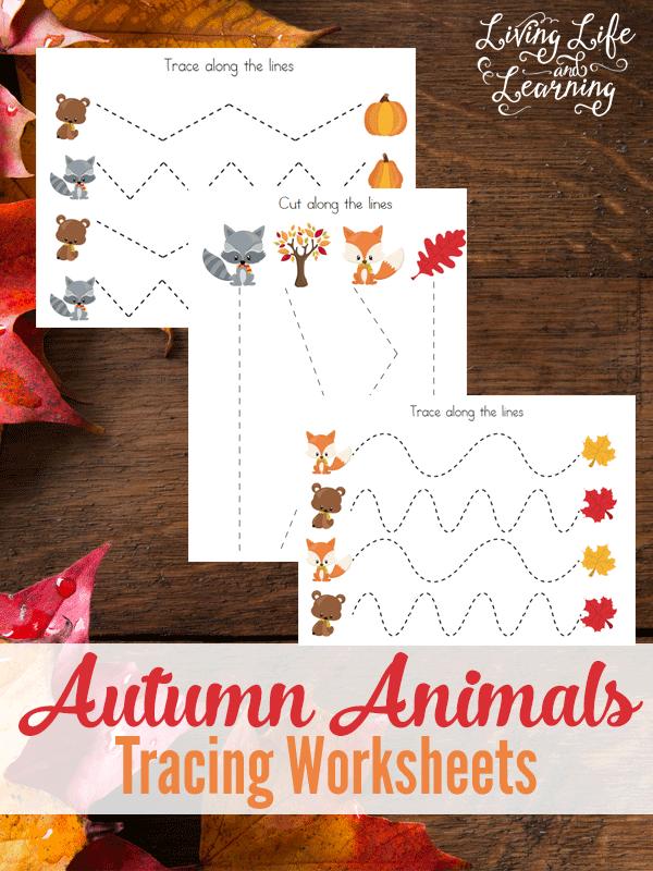 autumn-tracing