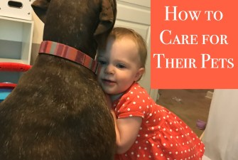 Teaching Your Toddler How to Care for Their Pets