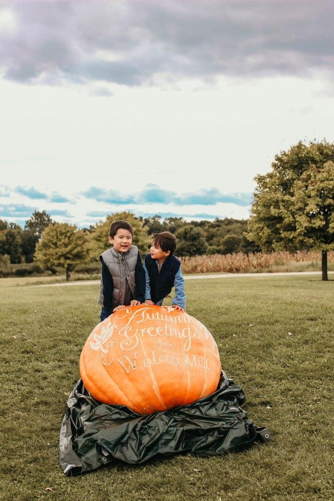 Michigan Fall and fun activities