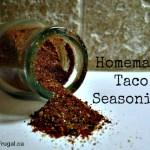 March Mixes: Homemade Taco Seasoning