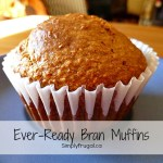 March Mixes – Ever Ready Bran Muffins