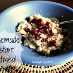March Mixes – Homemade Instant Oatmeal