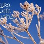 Links Worth Sharing: Week of February 21, 2015