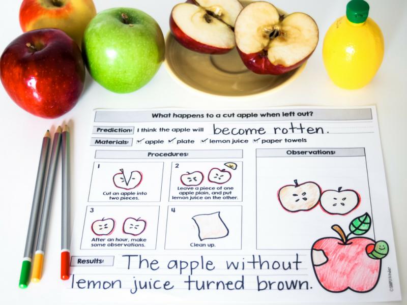 Kindergarten Apple Science Activities