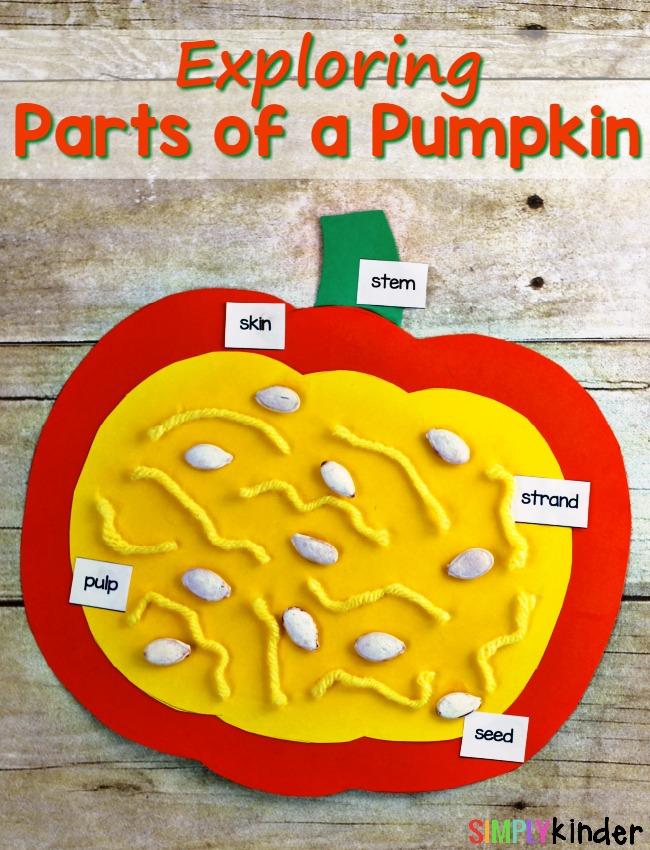 Parts of a Pumpkin, Exploring Parts of a Pumpkin, Science, Hands-On Science, Pumpkin Craft, Parts of a Pumpkin Craft