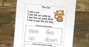 kindergarten sight word printable cat story