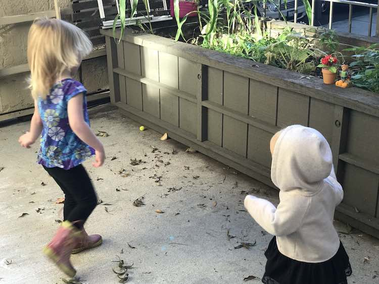 Ada and Zoey facing towards the dancing flower and scarecrow as they dance.