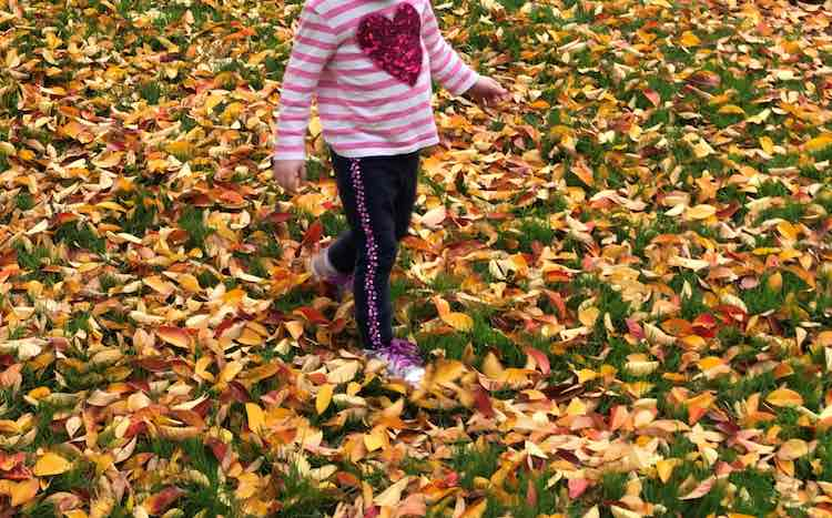 Impromptu walks are always fun. Ada especially enjoys crunching through the leaves on the grass instead of staying on the sidewalk. Depending on where you live you could also add a game to walk and follow the leader's steps through the snow.