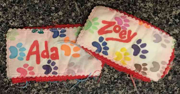 Ada and Zoey's freezie holders