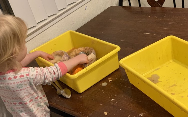 Surprisingly Ada was done the sensory activity first and had given Zoey her pumpkins and dumped the experiment remnants into Zoey's bin for her to play with.