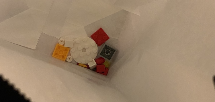 The LEGO bricks looked so small in some of the days' bags.