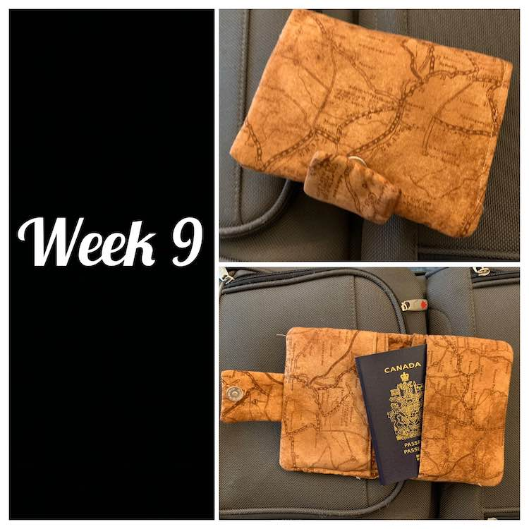 View of a two person passport wallet. Left side of image is black with white text saying week 9. Right side has two images. The top image is a closed passport wallet while the bottom image is an opened passport wallet with a passport sticking out showing where one of the pockets are.