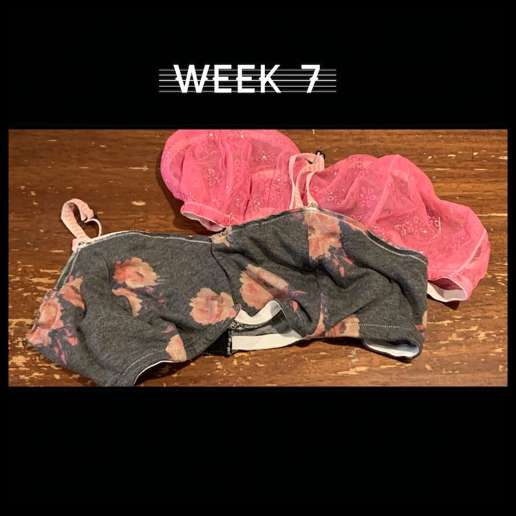 "Image shows a single image surrounded by a black border. Above and below the image the black is taller. Above the image it says ""week 7"".  The image is of two bralettes."