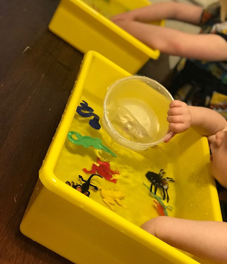 Zoey with a bin full of waters and plastic insects, reptiles, and amphibians... yet she's interested in the water in her plastic container. In the background you can see Ada's playing in her own water-filled bin.
