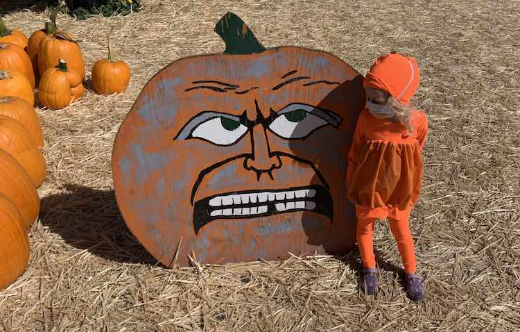 A painted pumpkin looking display with Zoey standing next to it looking back at it. Regular pumpkins lay to the left going off-photo.