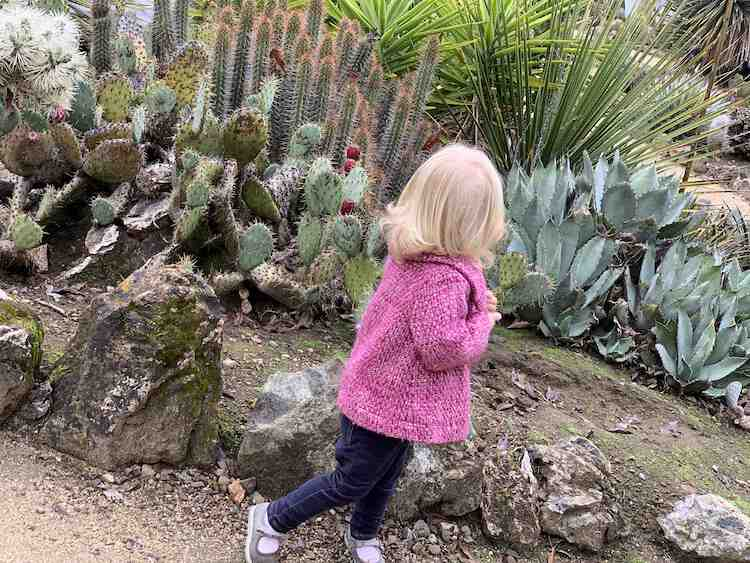 Image shows Zoey turned away from the camera looking at the cactus behind her.