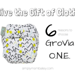 The Gift of Cloth Diapers – GroVia O.N.E.