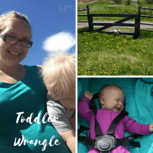 Toddler and Baby Road Trip - Toddler Wrangle - Pro Tip_ Keep them Contained - 2 Under 2