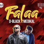 D black ft Medikal - Falaa
