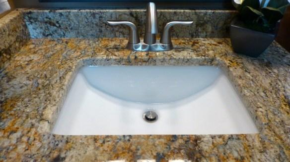 Master Bathroom Sink