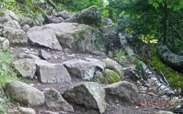 Oberg Loop Trail
