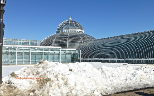 St Paul, MN Como Conservatory