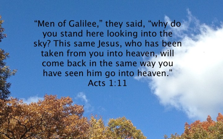 Acts 1:11