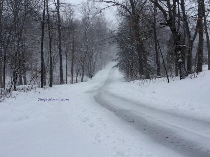 Minnesota Snowy Road
