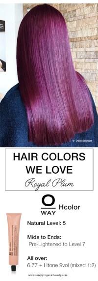 Plum Hair Dye Formula Hairstylegalleriescom Of Plum Hair