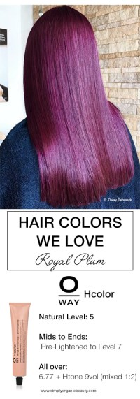 Plum Hair Dye Formula Hairstylegalleriescom Of Plum Hair ...