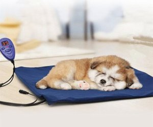 The electric pet heating pad review 2018 by Simply Pets showcases this sturdy, chew-resistant and versatile pet bed for your dog or cat