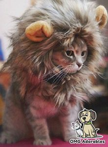 Shop for the Lion Mane costume for cats and dogs reviewed by simplypets.com for 2018