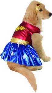 Dog with golden hair wearing a Wonder Woman dog costume with golden headband and skirt.