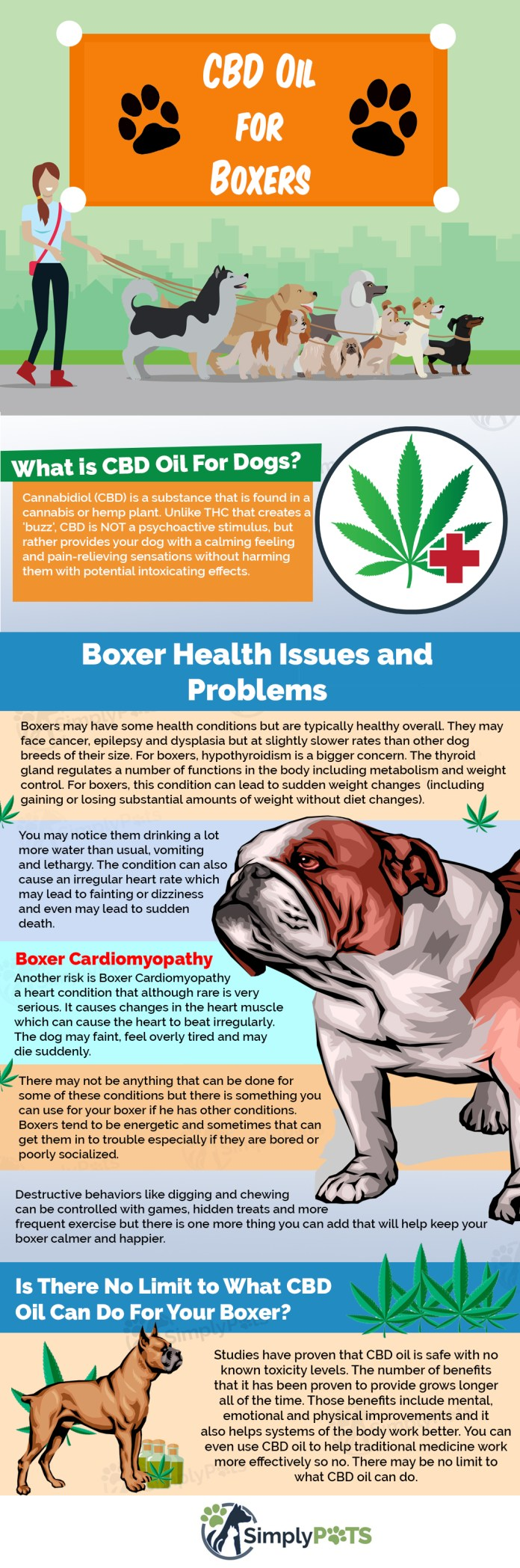 CBD Oil for [BOXERS] How Cannabis Hemp Tincture Can Help