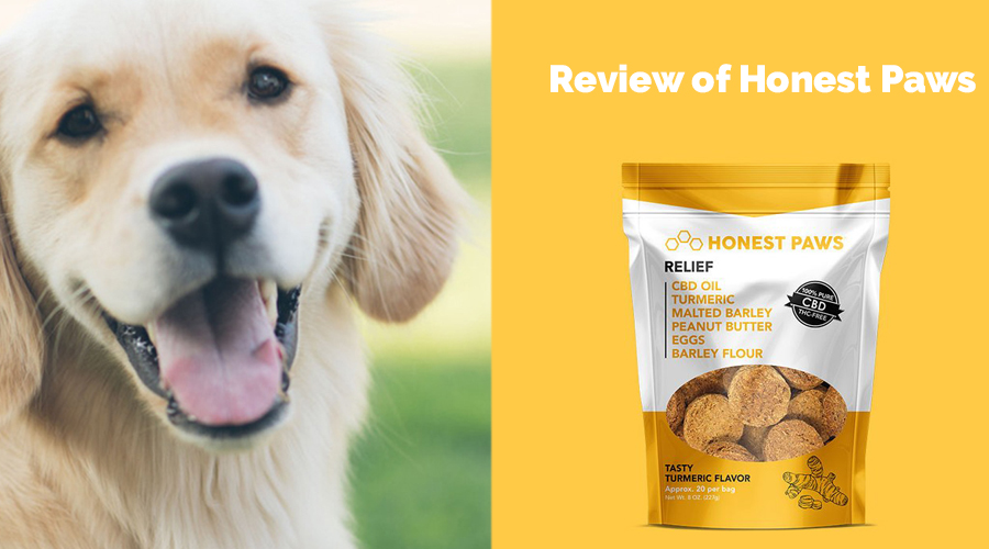 Review of Honest Paws