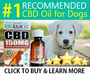 Best CBD [DOG TREATS] 🐶 Top Cannabis Hemp Edibles for Dogs