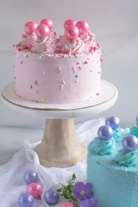 vanilla and chocolate party cakes for kids