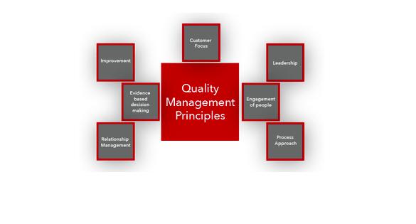 Quality Management Principle