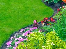 7 Spring Lawn Care Tips - Simply Stacie