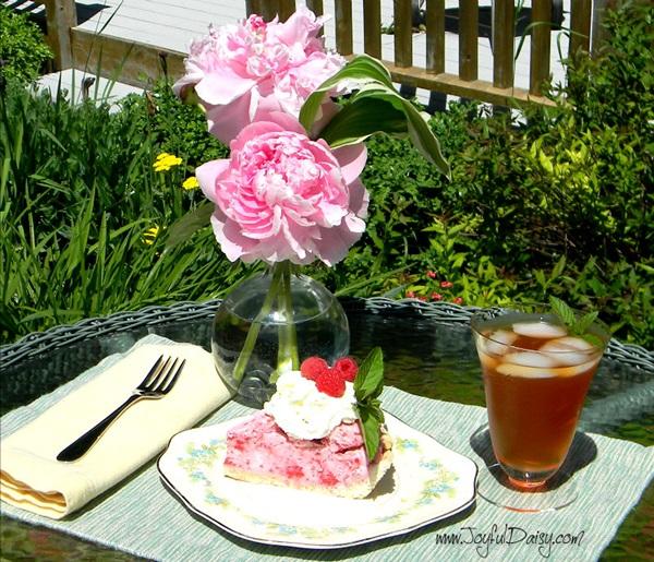 Frozen Raspberry Pie 12