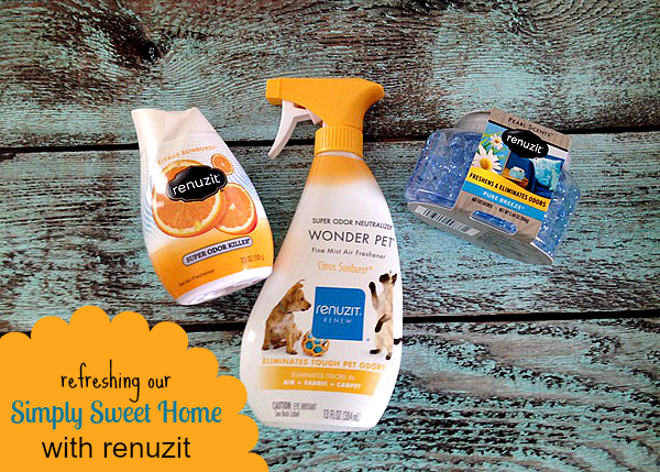 Renuzit Products