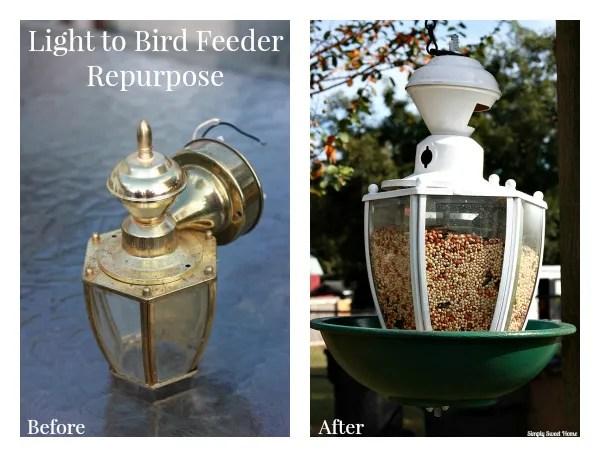 From Light to Bird Feeder