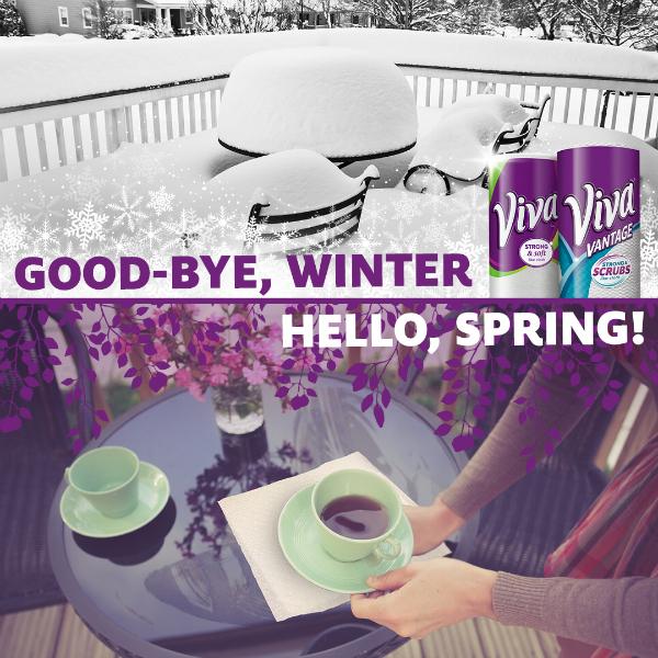K-C Spring Cleaning Viva