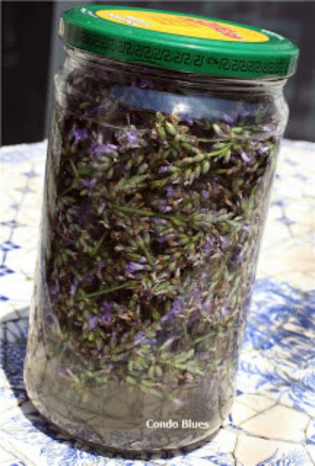 Homemade Lavender