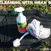 Car Cleaning with Mean Green