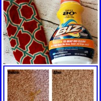 Carpet Cleaning with Biz