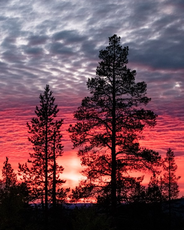 Sarkitunturi, Laponie Finlandaise