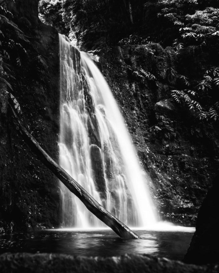 Salto do Prego, Sao Miguel, Açores